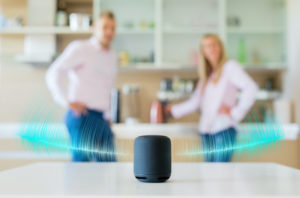 in the kitchen with voice search device